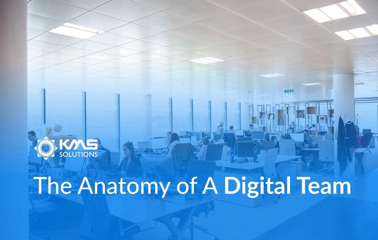 the-anatomy-of-a-digital-team